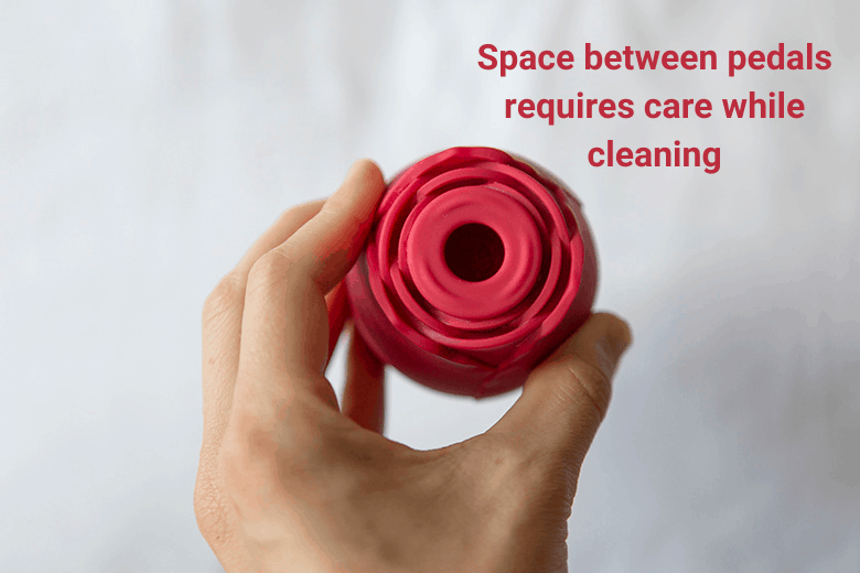 Rose Toy Cleaning